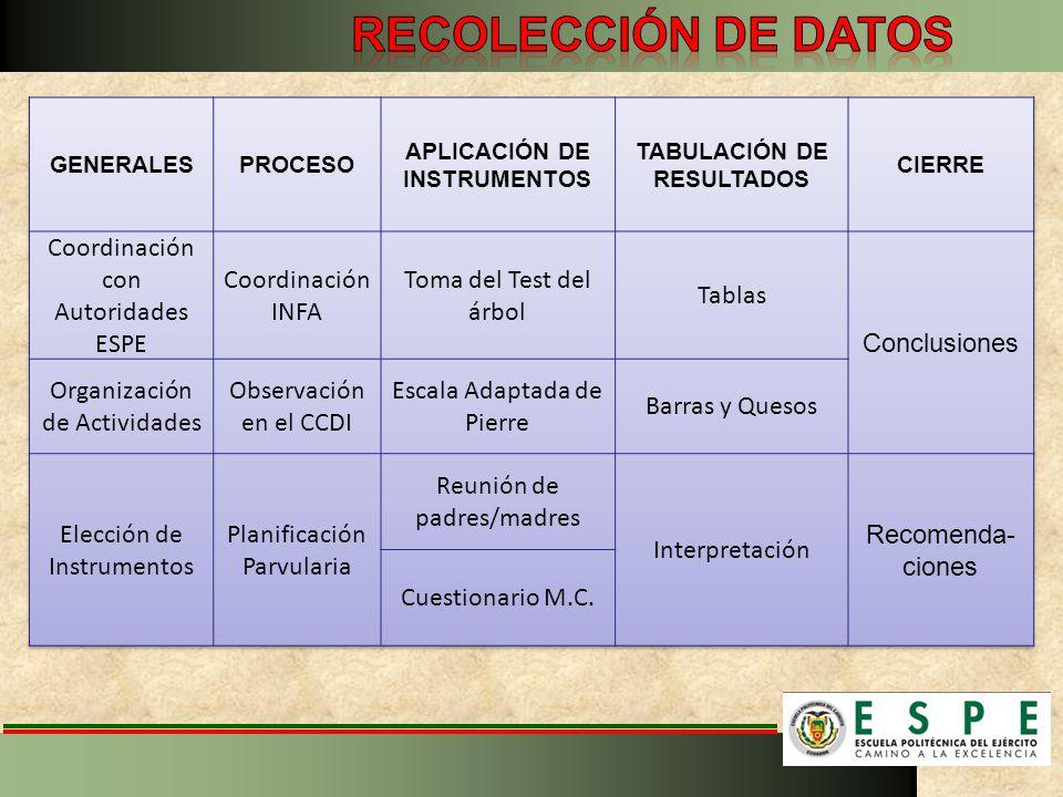 APLICACIÓN DE INSTRUMENTOS TABULACIÓN DE RESULTADOS