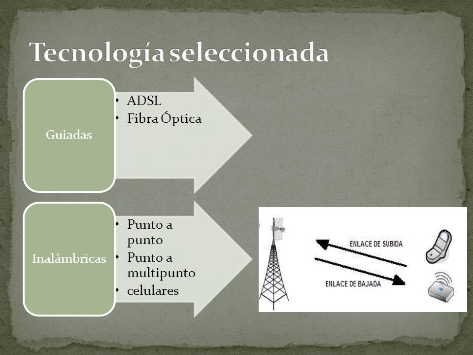 Tecnología seleccionada