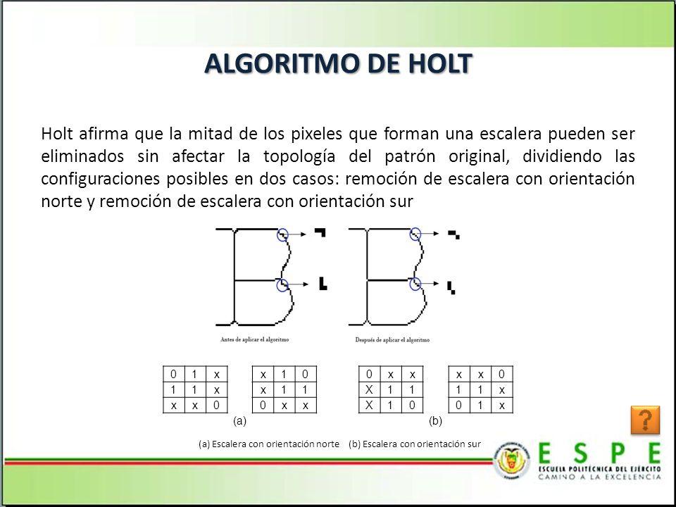 ALGORITMO DE HOLT