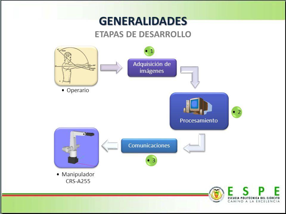 GENERALIDADES ETAPAS DE DESARROLLO