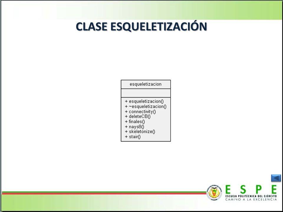 CLASE ESQUELETIZACIÓN