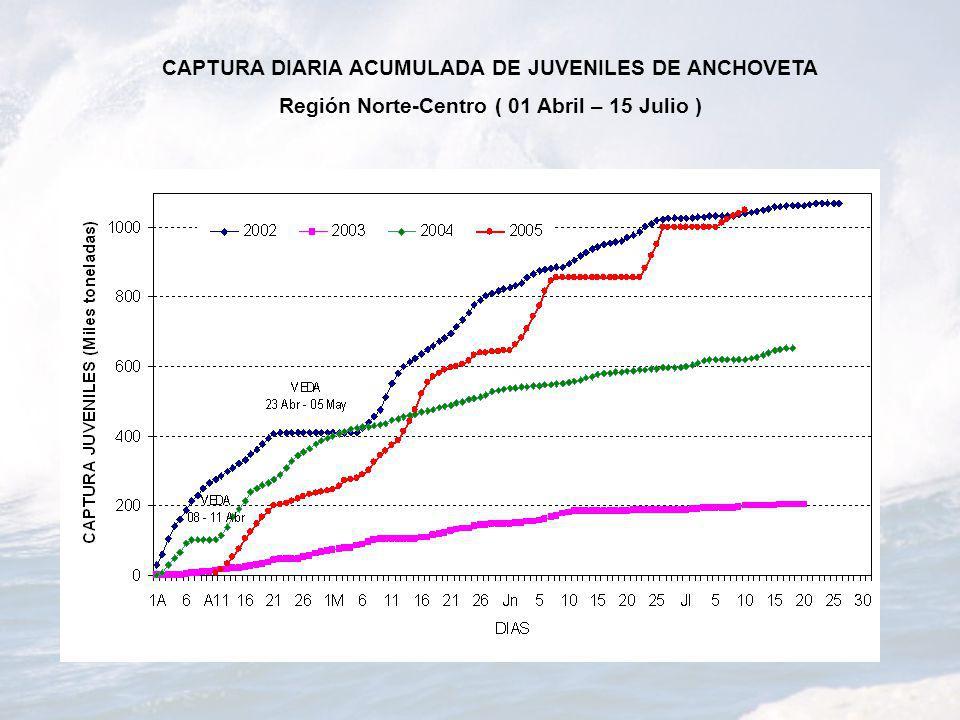 CAPTURA DIARIA ACUMULADA DE JUVENILES DE ANCHOVETA
