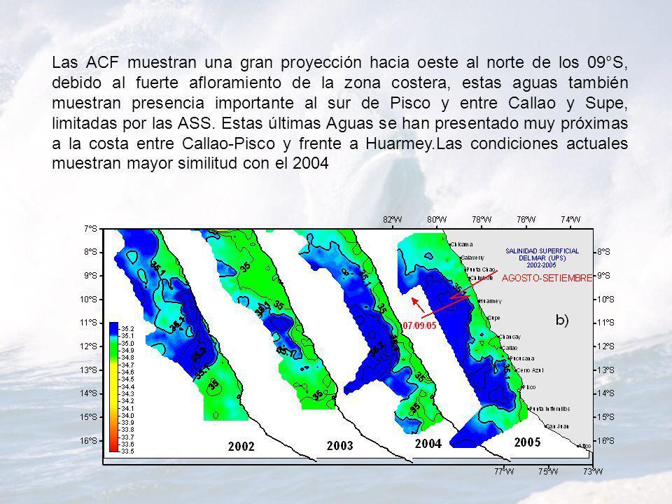 Las ACF muestran una gran proyección hacia oeste al norte de los 09°S, debido al fuerte afloramiento de la zona costera, estas aguas también muestran presencia importante al sur de Pisco y entre Callao y Supe, limitadas por las ASS.