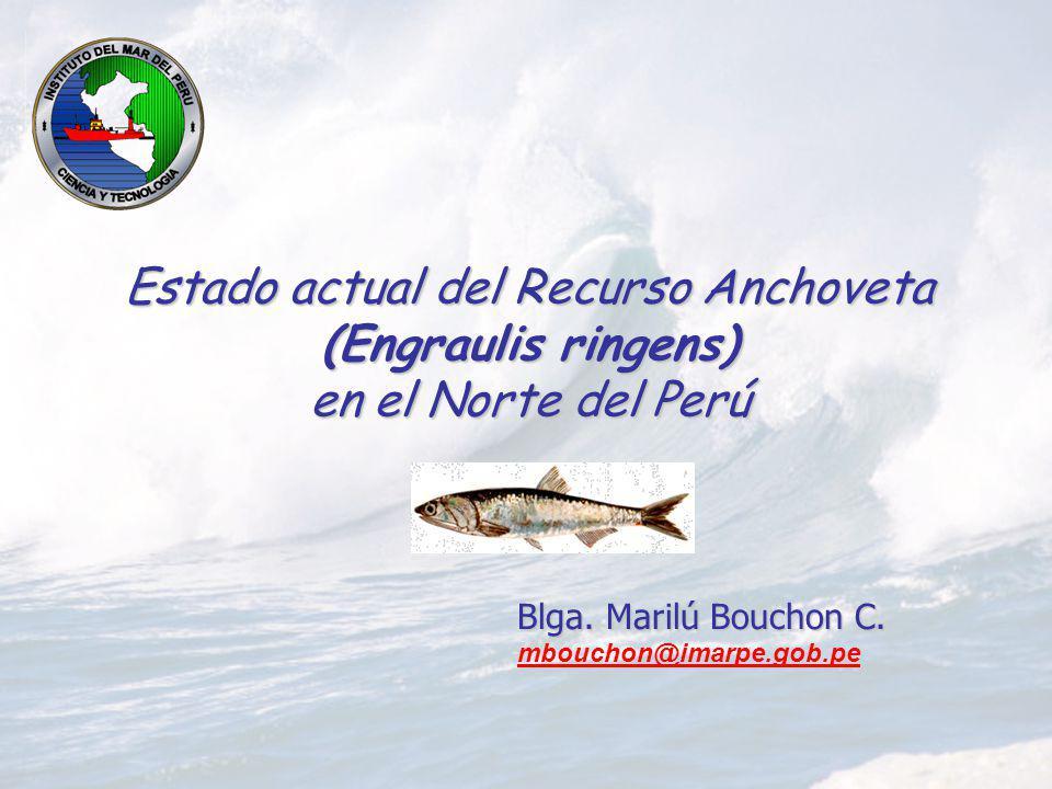 Estado actual del Recurso Anchoveta (Engraulis ringens) en el Norte del Perú