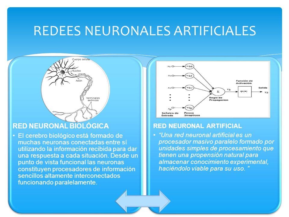 REDEES NEURONALES ARTIFICIALES