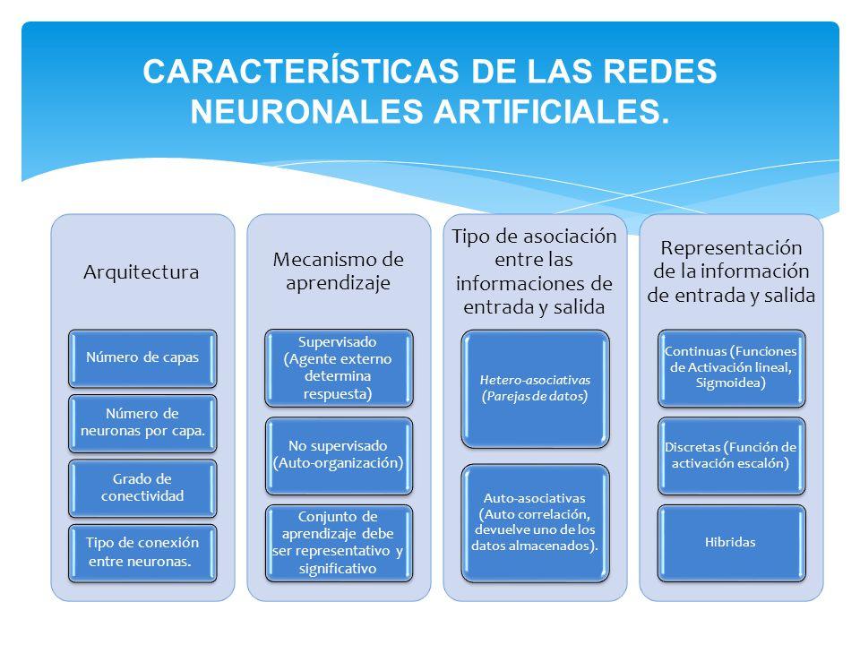 CARACTERÍSTICAS DE LAS REDES NEURONALES ARTIFICIALES.
