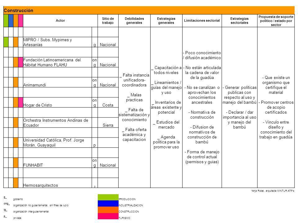 Construcción Actor. Sitio de trabajo. Debilidades generales. Estrategias generales. Limitaciones sectorial.