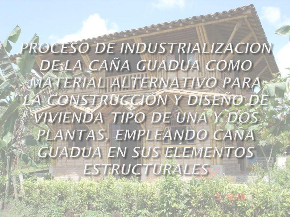 PROCESO DE INDUSTRIALIZACION DE LA CAÑA GUADUA COMO MATERIAL ALTERNATIVO PARA LA CONSTRUCCIÓN Y DISEÑO DE VIVIENDA TIPO DE UNA Y DOS PLANTAS, EMPLEANDO CAÑA GUADUA EN SUS ELEMENTOS ESTRUCTURALES