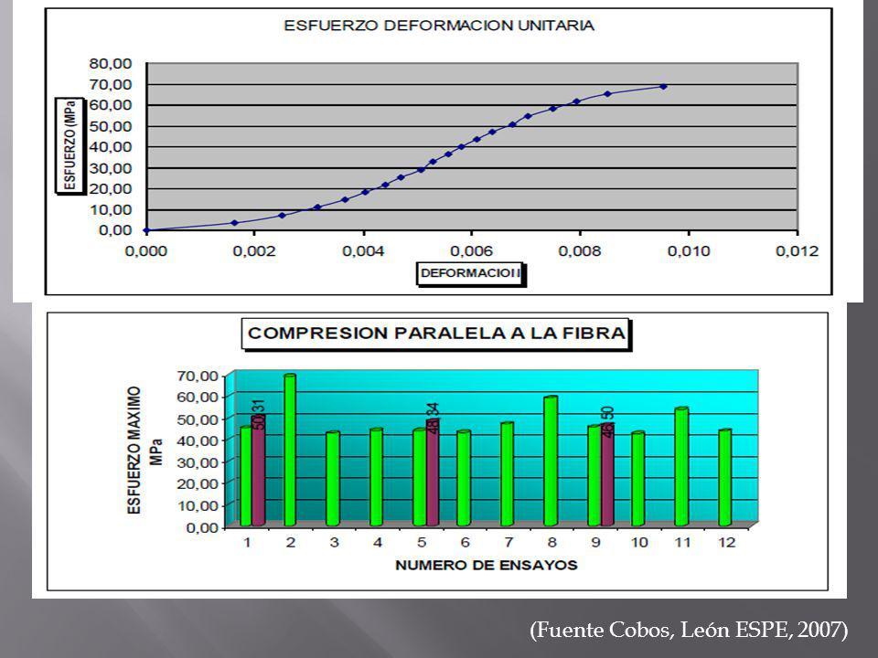 (Fuente Cobos, León ESPE, 2007)