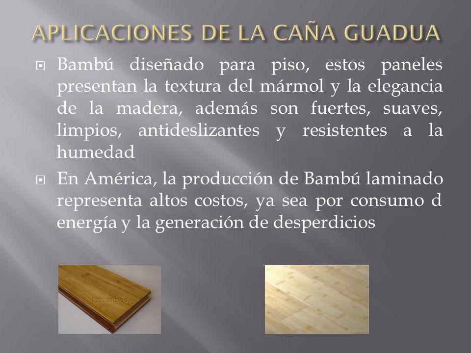 APLICACIONES DE LA CAÑA GUADUA