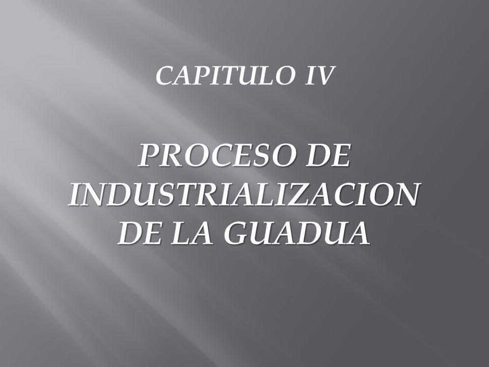 PROCESO DE INDUSTRIALIZACION DE LA GUADUA