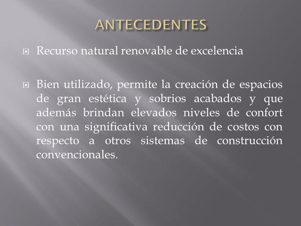 ANTECEDENTES Recurso natural renovable de excelencia
