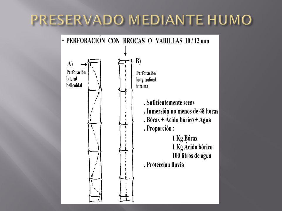 PRESERVADO MEDIANTE HUMO