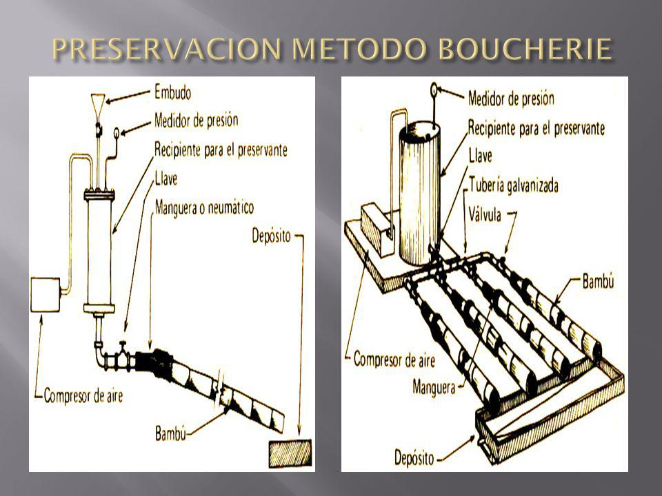 PRESERVACION METODO BOUCHERIE
