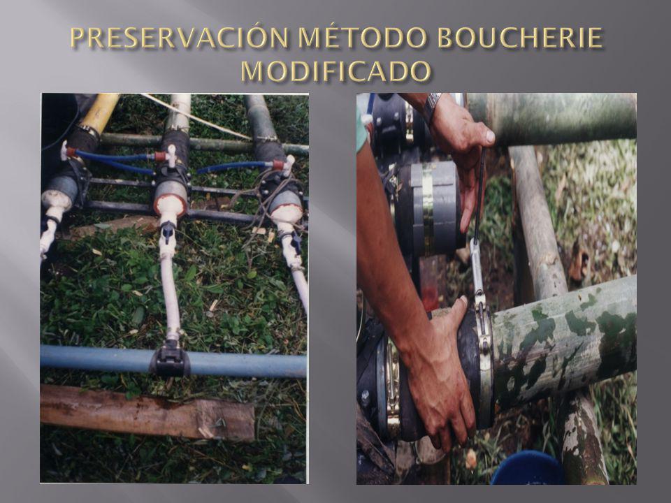 PRESERVACIÓN MÉTODO BOUCHERIE MODIFICADO