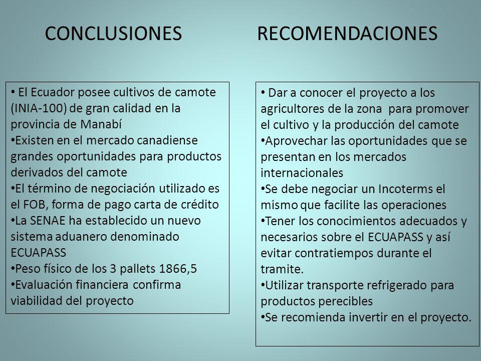 CONCLUSIONES RECOMENDACIONES