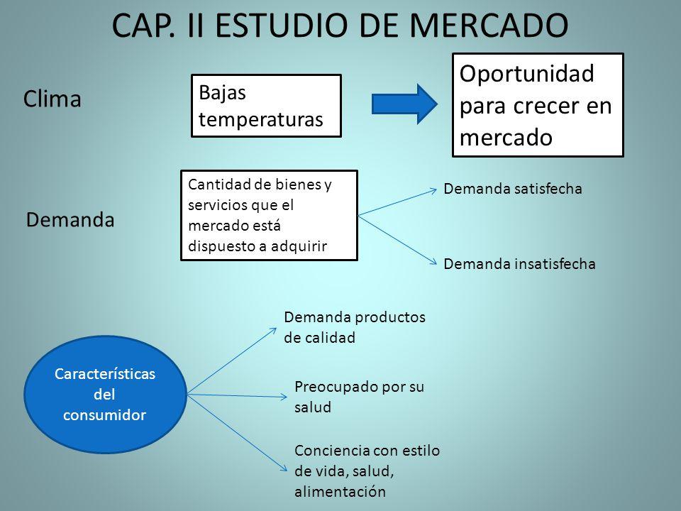 CAP. II ESTUDIO DE MERCADO