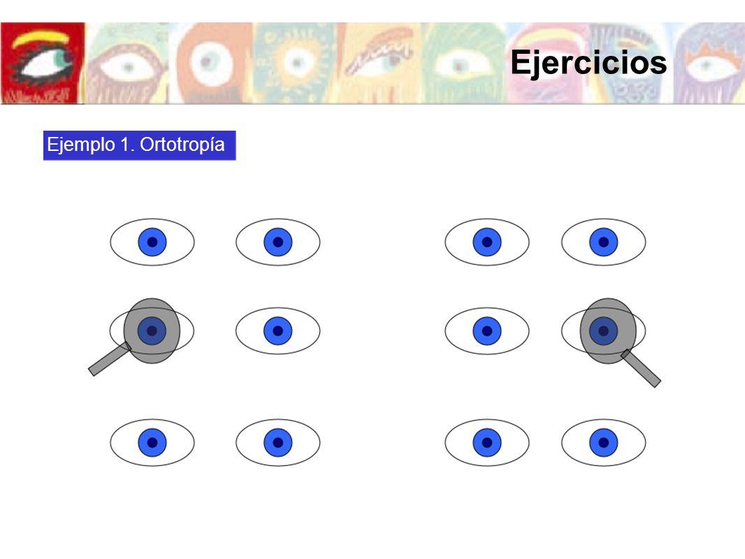 Ejercicios Ejemplo 1. Ortotropía