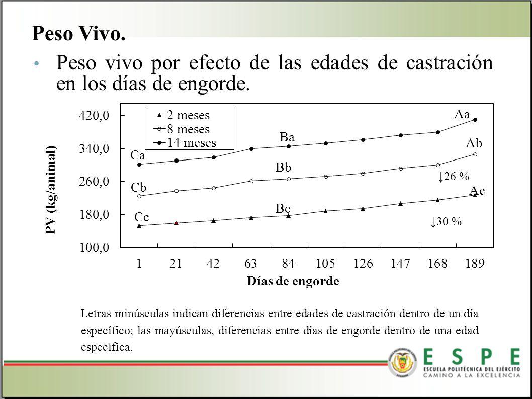 Peso Vivo. Peso vivo por efecto de las edades de castración en los días de engorde.