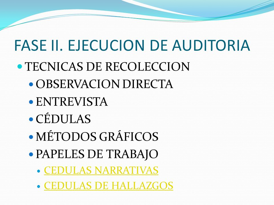 FASE II. EJECUCION DE AUDITORIA
