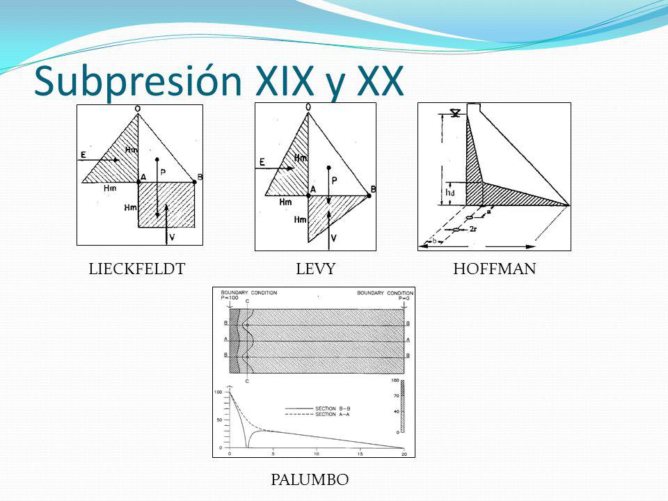 Subpresión XIX y XX LIECKFELDT LEVY HOFFMAN PALUMBO