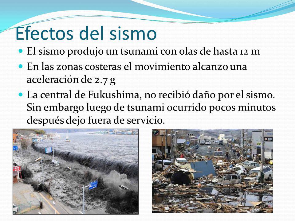 Efectos del sismo El sismo produjo un tsunami con olas de hasta 12 m