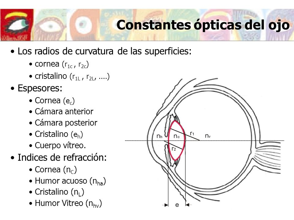 Constantes ópticas del ojo