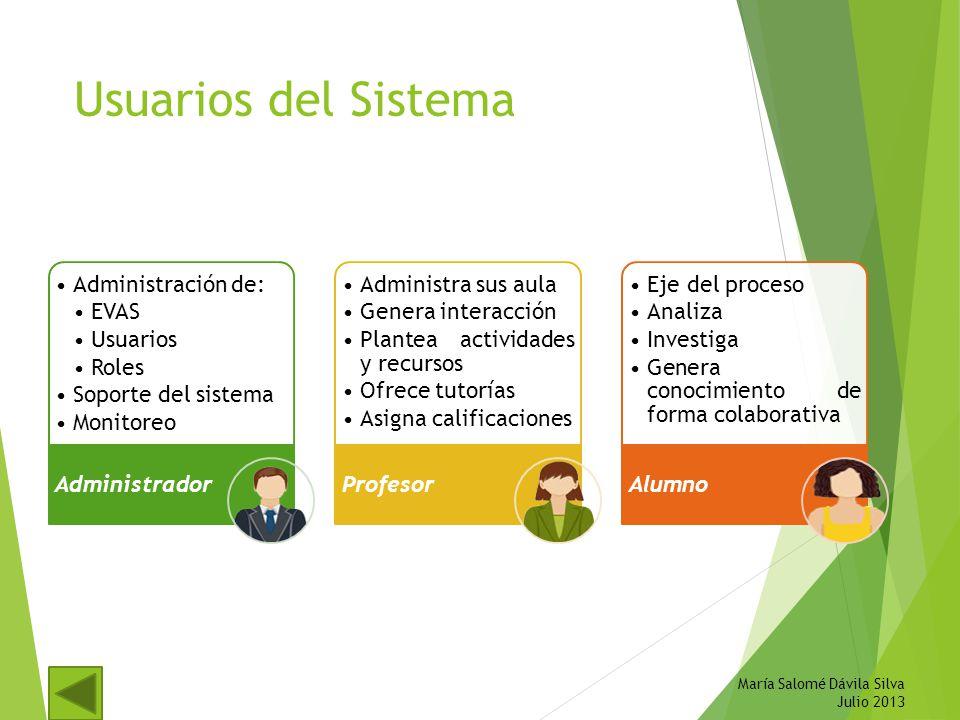 Usuarios del Sistema María Salomé Dávila Silva Julio 2013