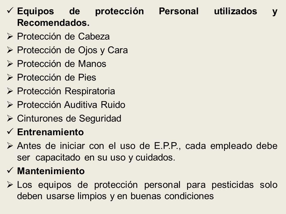 Equipos de protección Personal utilizados y Recomendados.