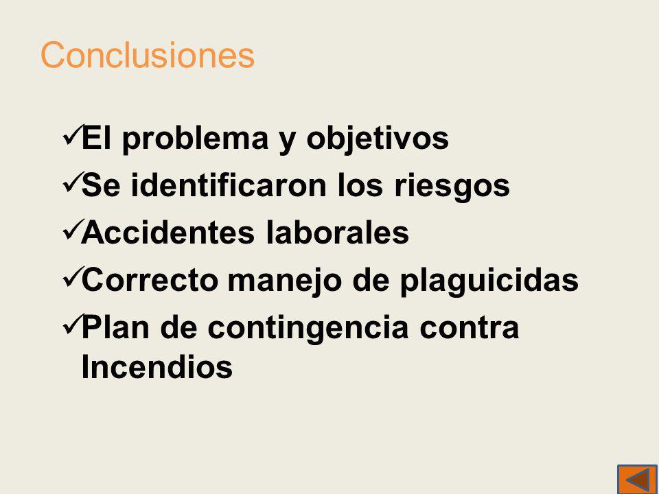 Conclusiones El problema y objetivos Se identificaron los riesgos