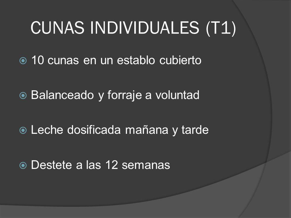 CUNAS INDIVIDUALES (T1)