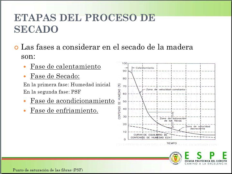 ETAPAS DEL PROCESO DE SECADO