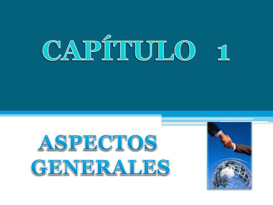 CAPÍTULO 1 ASPECTOS GENERALES
