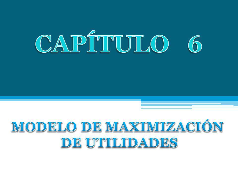 MODELO DE MAXIMIZACIÓN