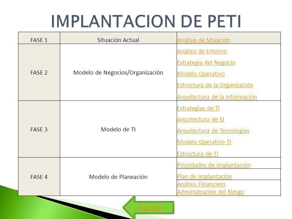 Modelo de Negocios/Organización