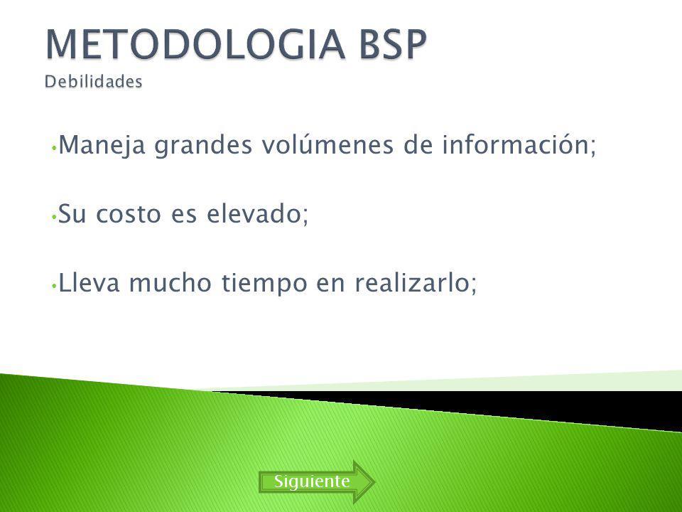 METODOLOGIA BSP Debilidades