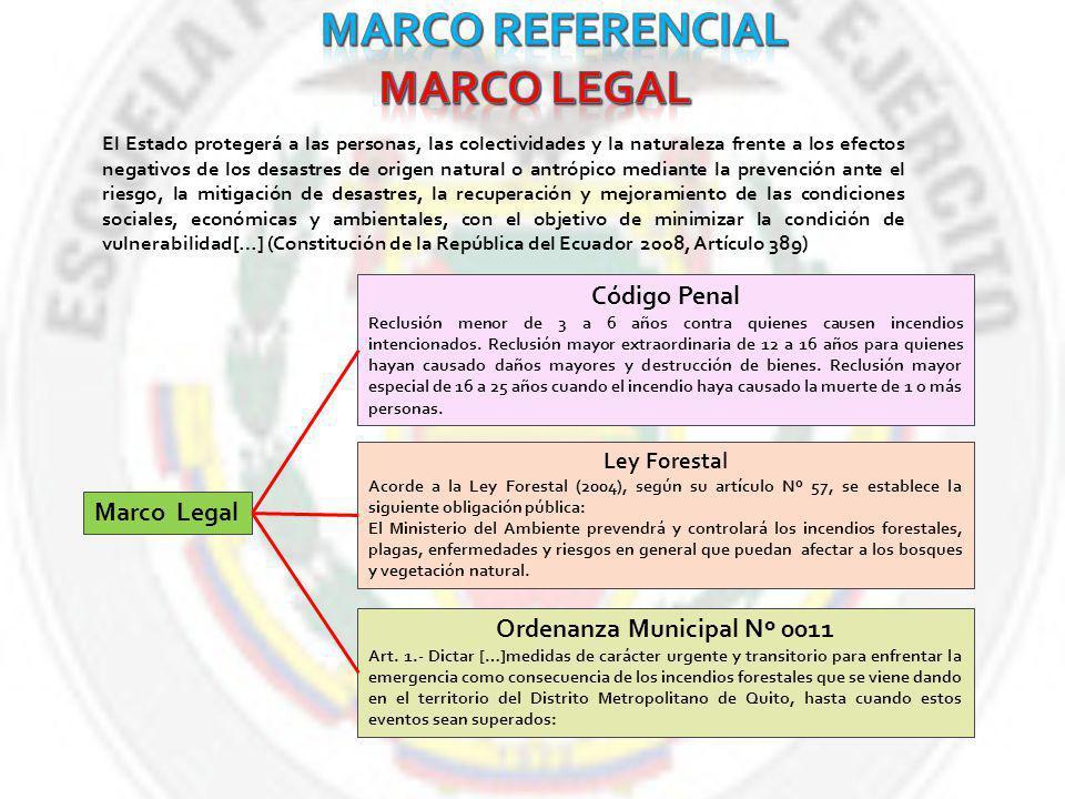 Ordenanza Municipal Nº 0011