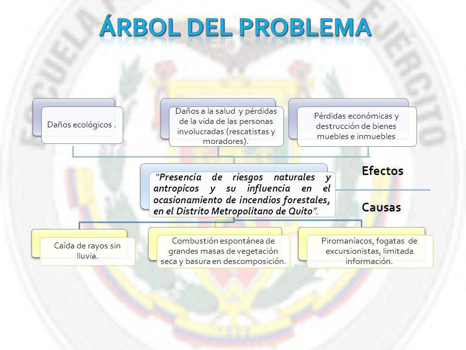 Árbol del Problema Efectos Causas