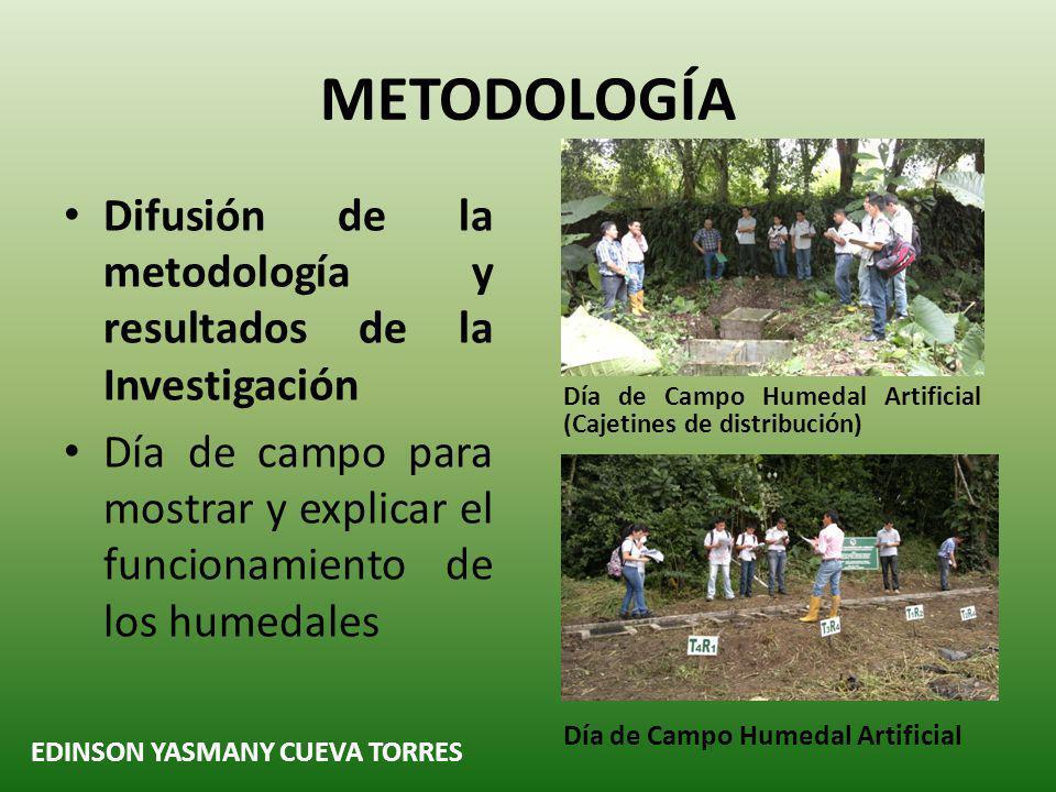 METODOLOGÍA Difusión de la metodología y resultados de la Investigación. Día de campo para mostrar y explicar el funcionamiento de los humedales.