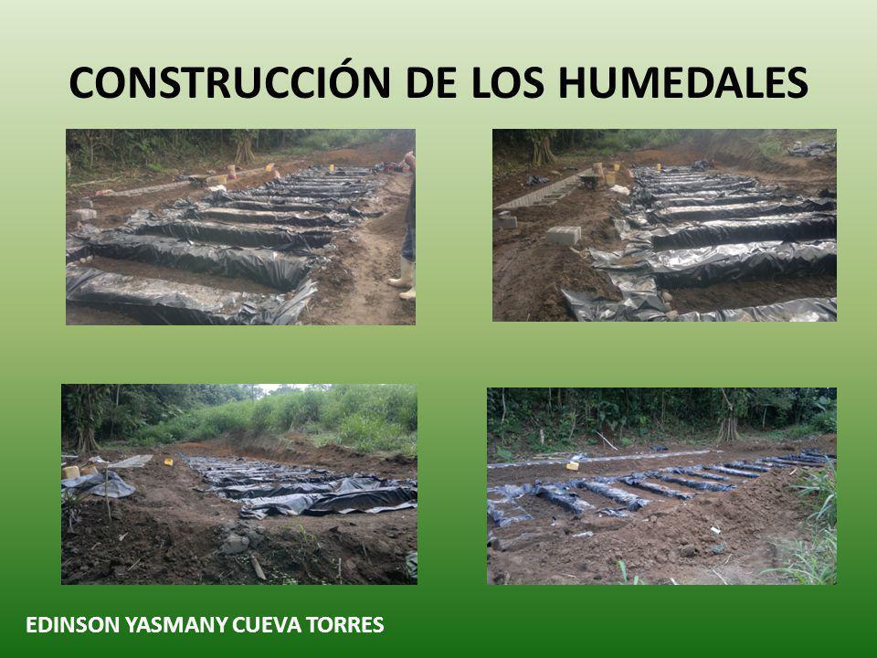 CONSTRUCCIÓN DE LOS HUMEDALES