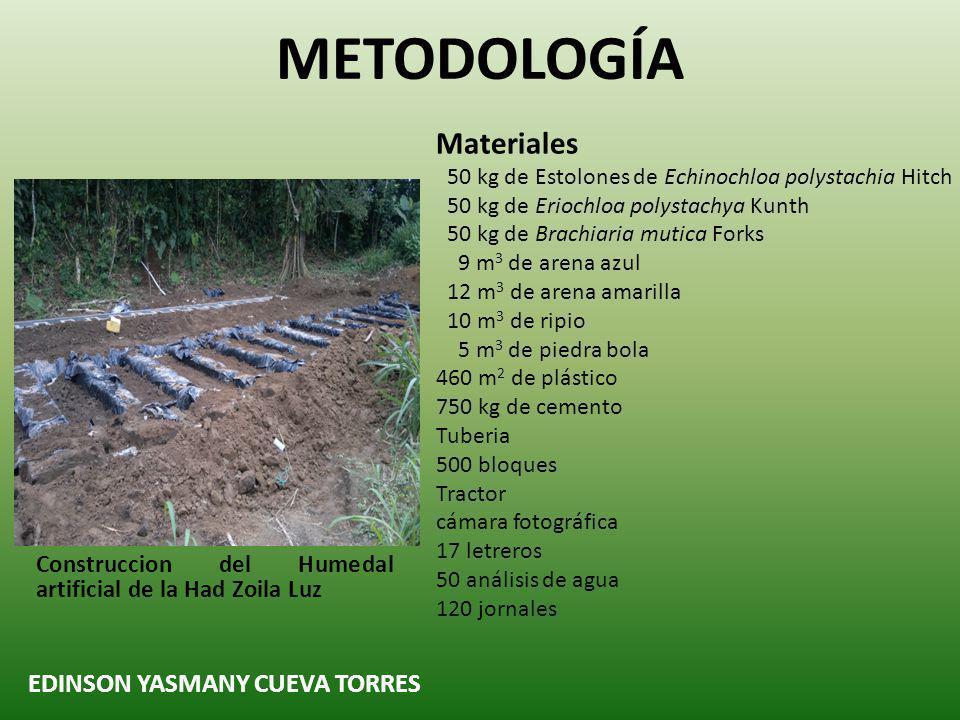 METODOLOGÍA Materiales EDINSON YASMANY CUEVA TORRES