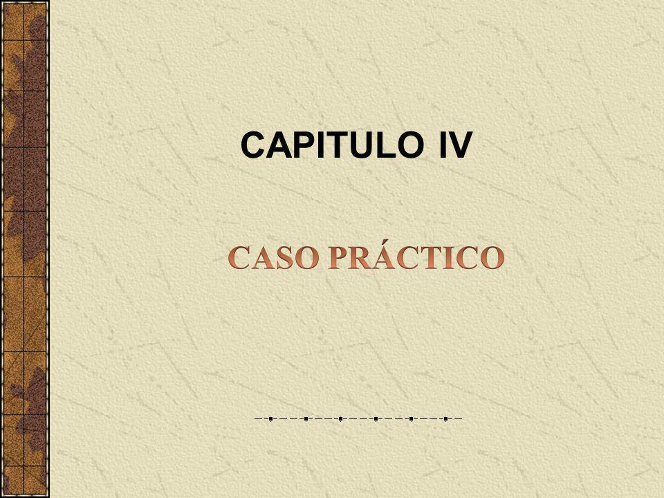 CAPITULO IV CASO PRÁCTICO