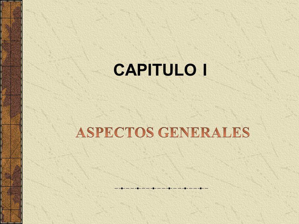 CAPITULO I ASPECTOS GENERALES