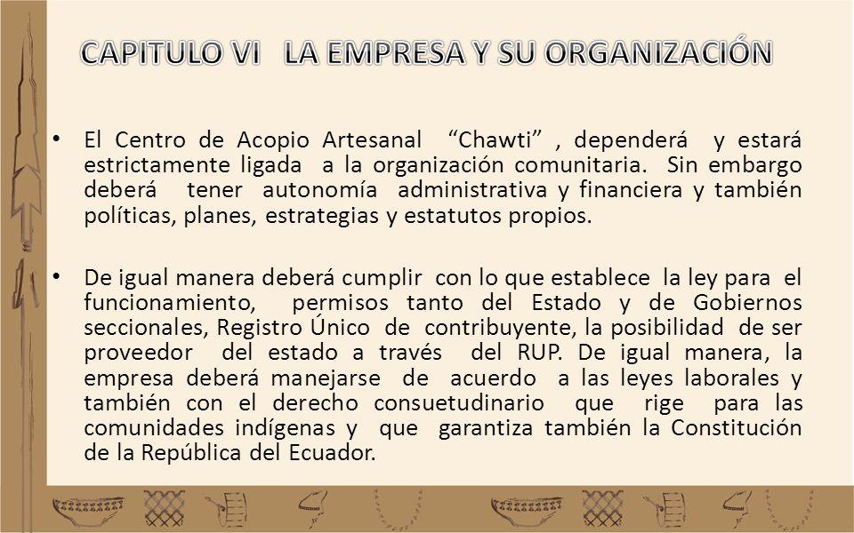 CAPITULO VI LA EMPRESA Y SU ORGANIZACIÓN