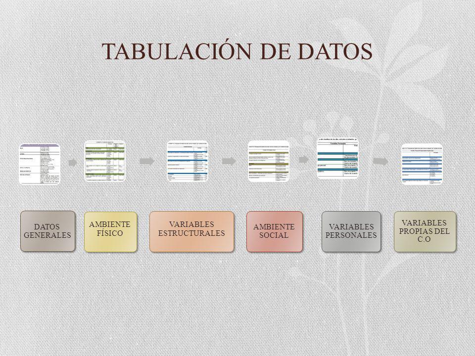 TABULACIÓN DE DATOS DATOS GENERALES AMBIENTE FÍSICO