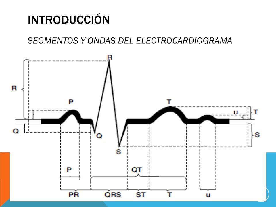 INTRODUCCIÓN SEGMENTOS Y ONDAS DEL ELECTROCARDIOGRAMA