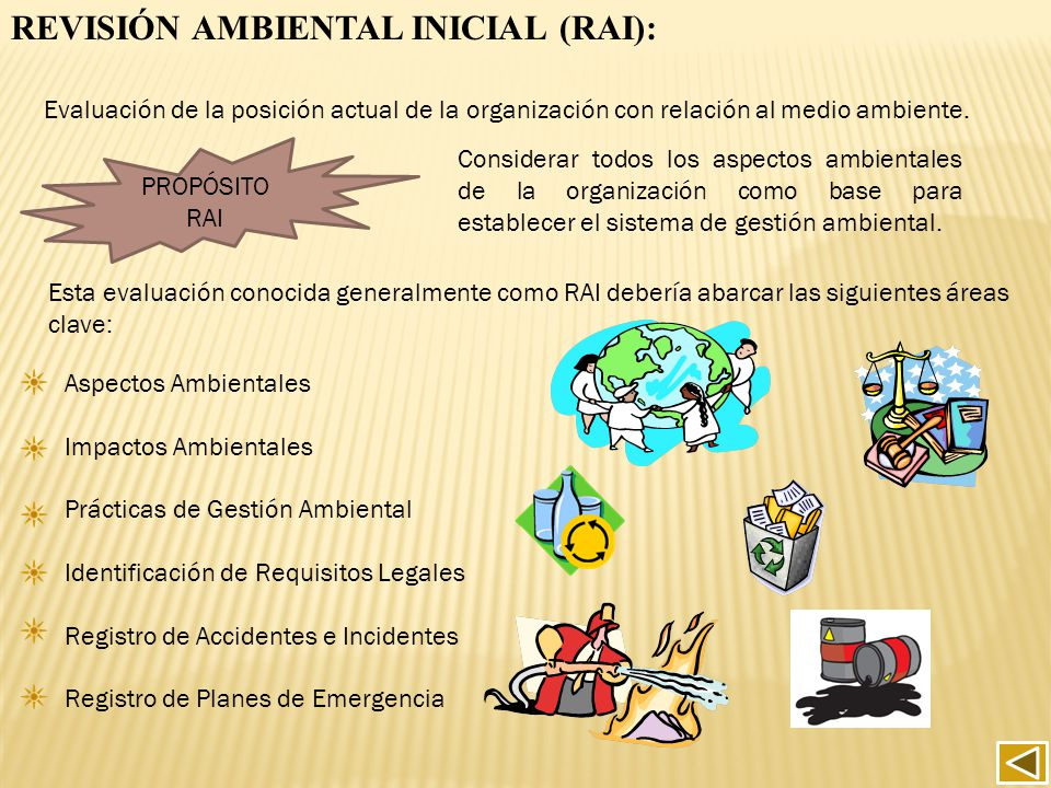 REVISIÓN AMBIENTAL INICIAL (RAI):