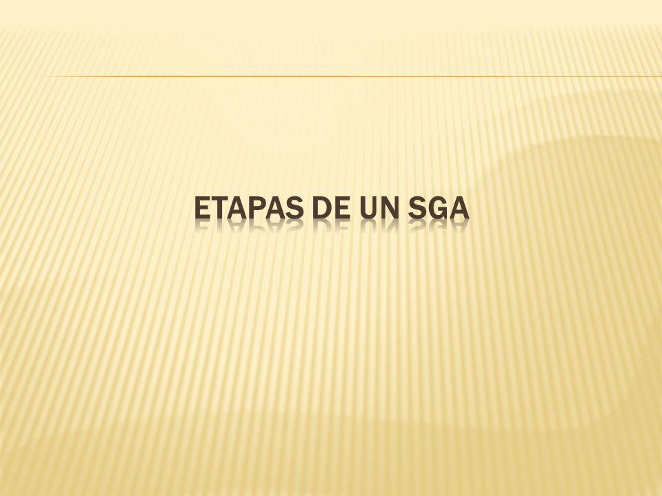 ETAPAS DE UN SGA