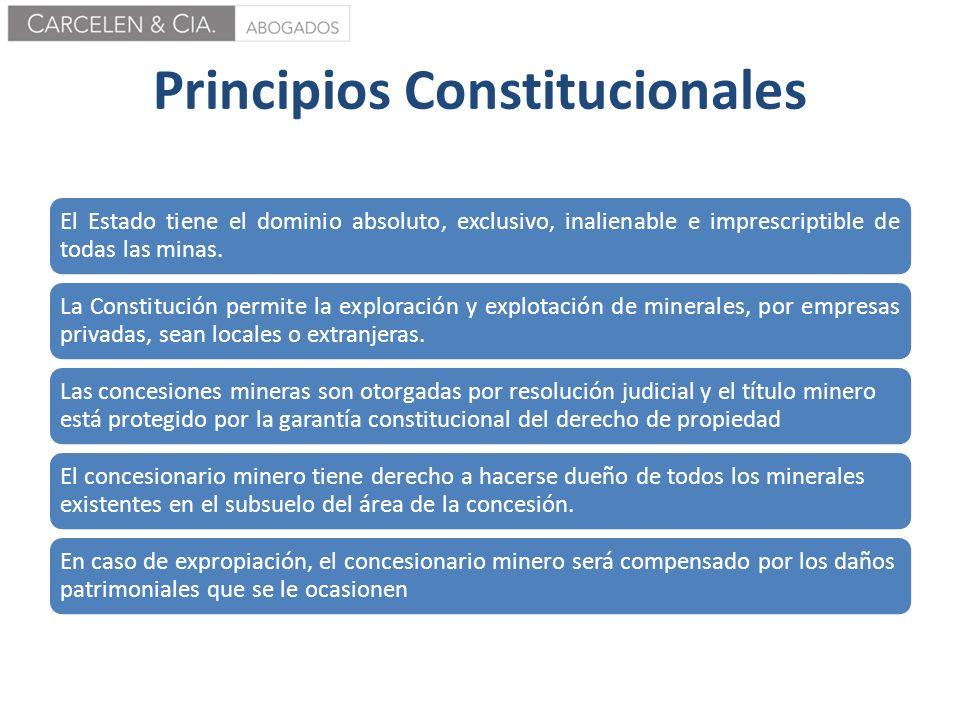 Principios Constitucionales