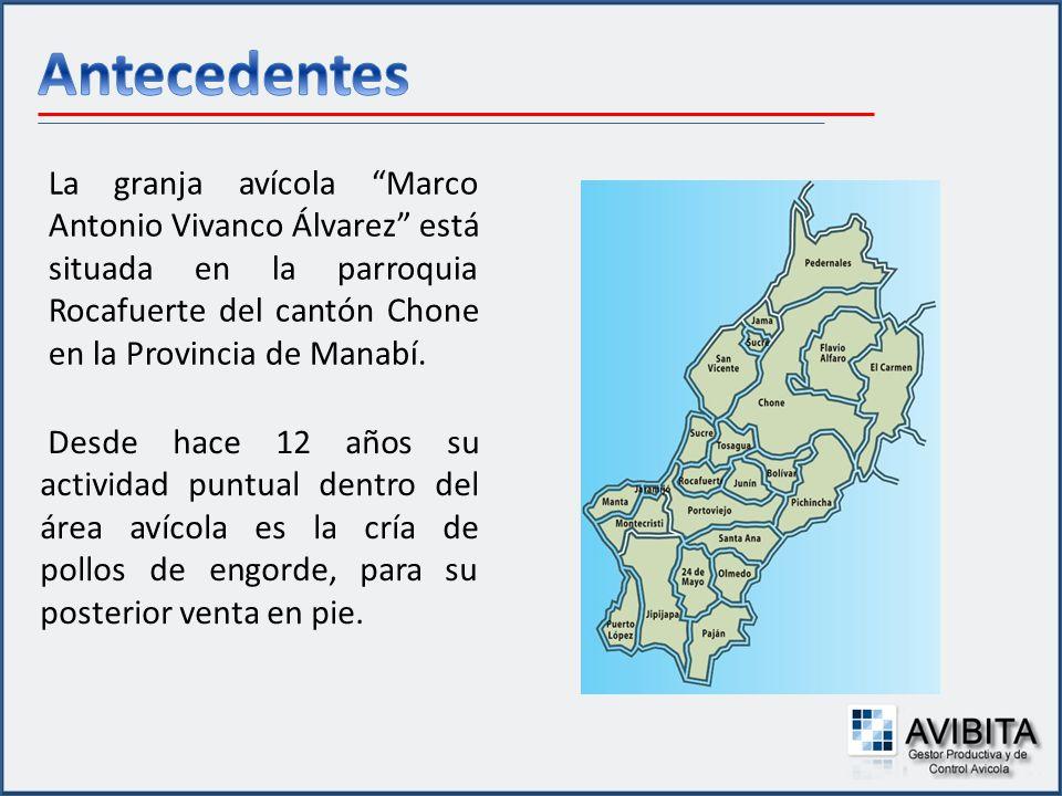 Antecedentes La granja avícola Marco Antonio Vivanco Álvarez está situada en la parroquia Rocafuerte del cantón Chone en la Provincia de Manabí.